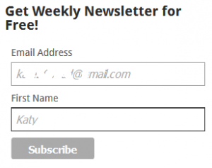 travel blog subscription