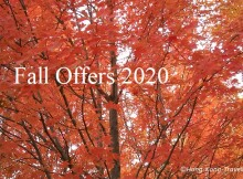 fall offers 2020 hk