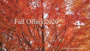 fall offers 2020
